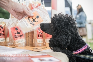 pupaid Tilly-17
