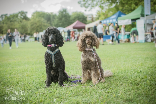 pupaid Tilly-46