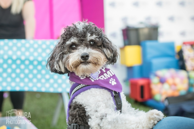 pupaid Tilly-52