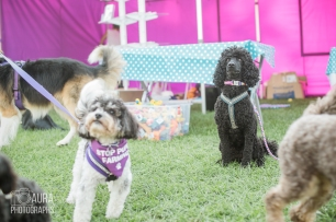 pupaid Tilly-54