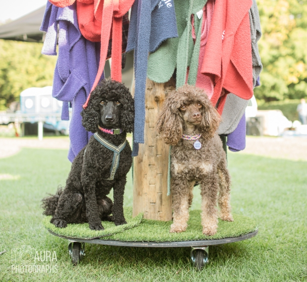 pupaid Tilly-57