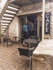 cafedogandrabbit4