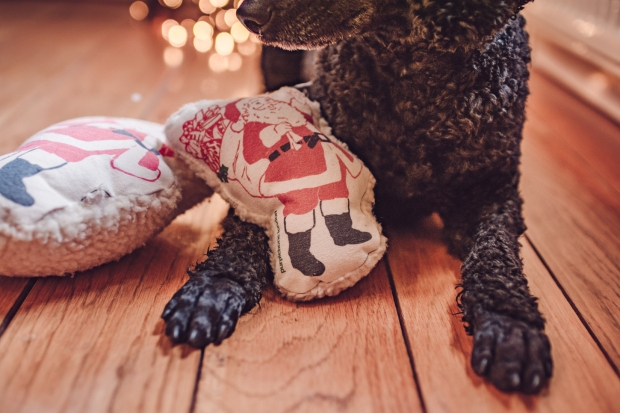 tillychristmasguide_2018-20