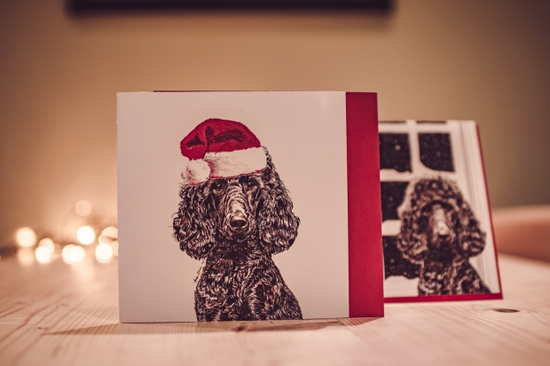 tillychristmasguide_2018-25
