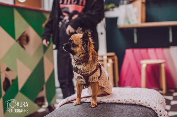 dogsofiglondon_auraphotographs-9